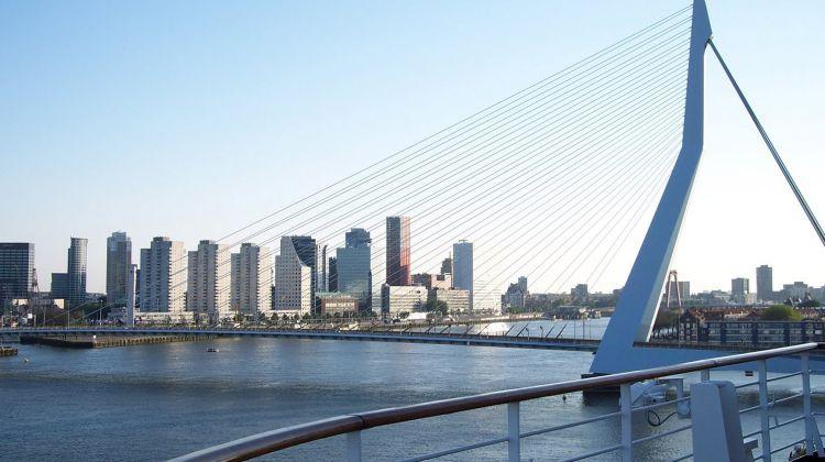 Private walking tour Rotterdam