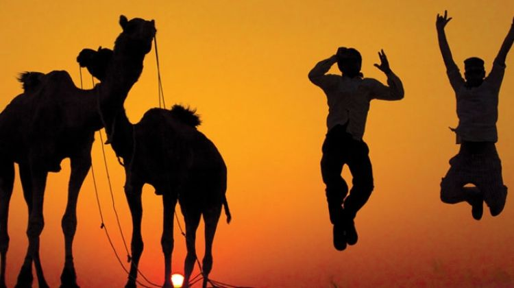 Rajasthan Experience