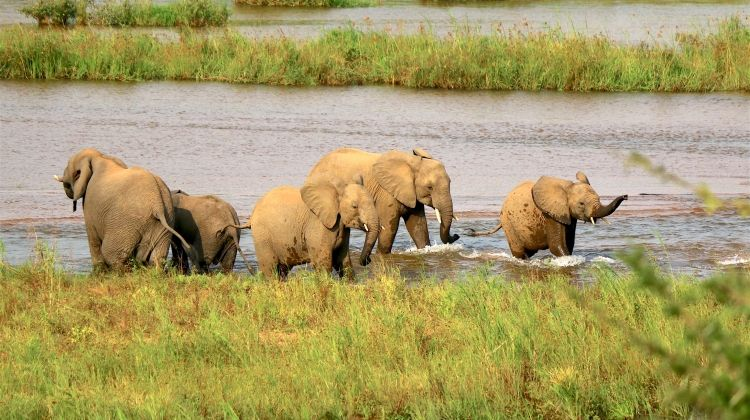 Rediscover Kruger to the Drakensberg 14 Days