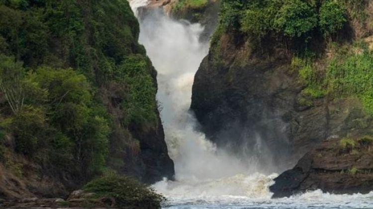 Rhinos,Waterfalls & Chimps