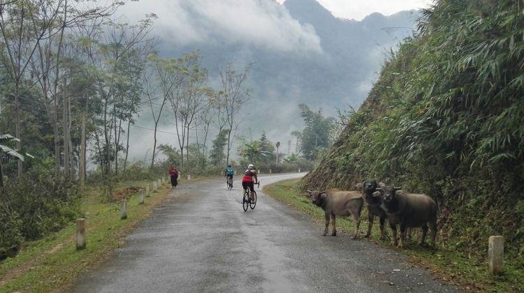 Road Biking the Ho Chi Minh Highway