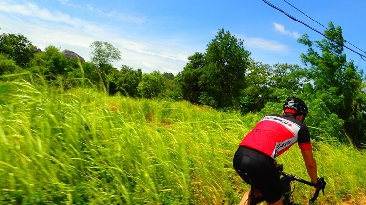 Road Cycling India Coast to Coast