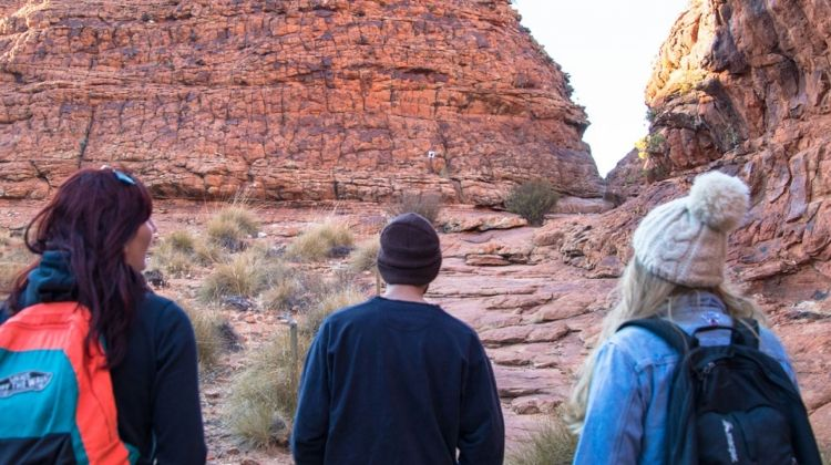 Rock N Canyon