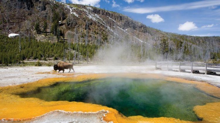 Rockies, Yellowstone & Mt Rushmore