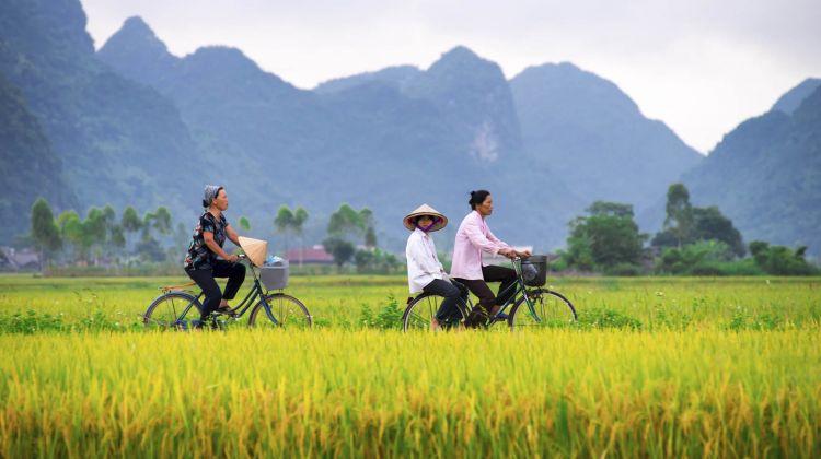 Romancing in Vietnam