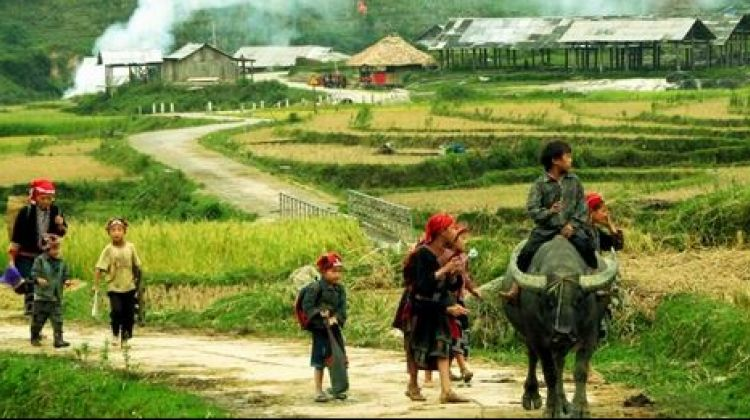 Round - Trip 3-Night Sapa Easy Trek and Homestay from HN