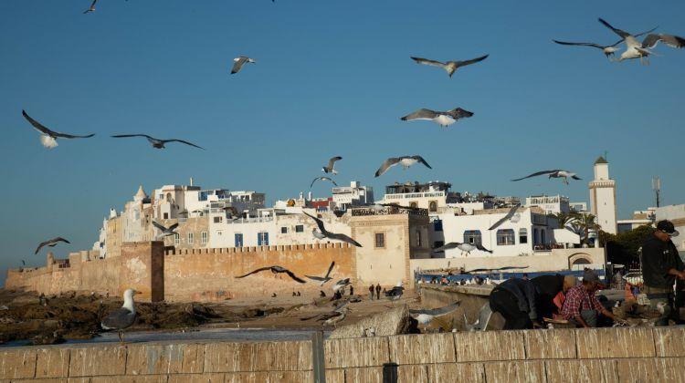Royal Cities of Morocco