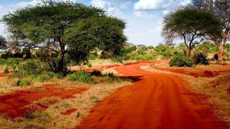 Safari To The Taita Hills, Short Break