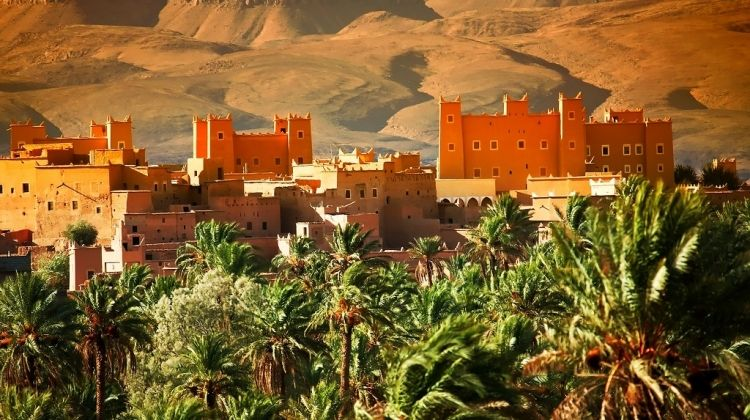 Sahara And Big South, Private Tour