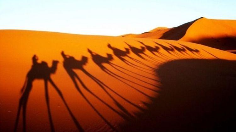 Sahara Nomad Express