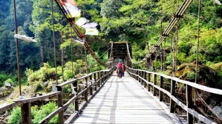 Sandakphu - Phalut trek