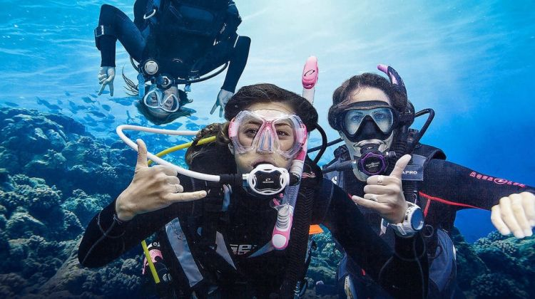 Scuba Diving Experience with BBQ Lunch