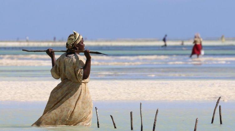 Selous And Zanzibar Safari, 5* Hotel