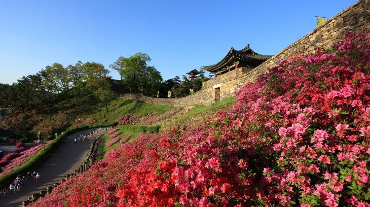 Seoul & Western Korea In  7 Days