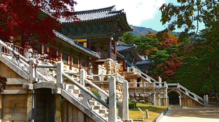 Seoul City Tour & Around South Korea 10-Day Trip