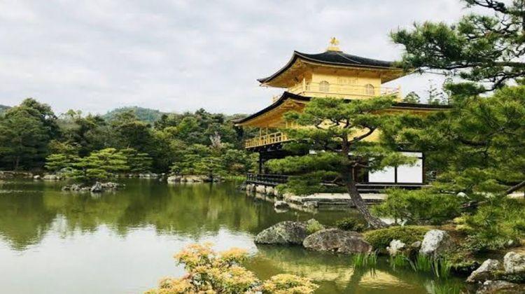 Shinkansen Tour: Toyko to Osaka