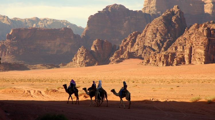 Ship Of The Desert: Camel Safari In Jordan