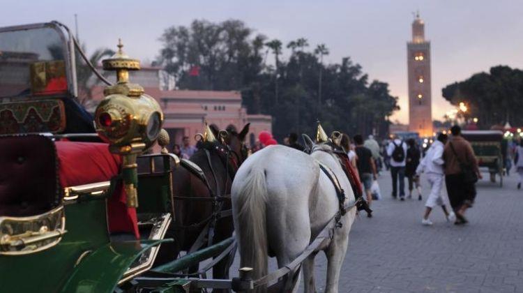 Sightseeing Marrakech Depart From Casablanca