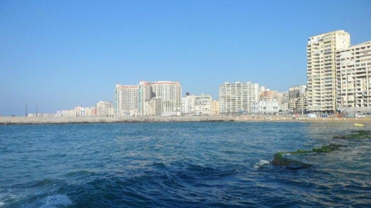 Sightseeing Tour of Alexandria