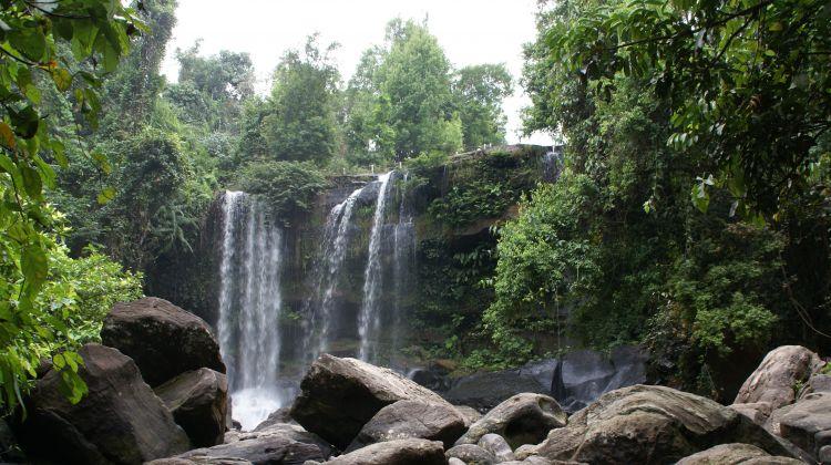 Silver Langur Trail