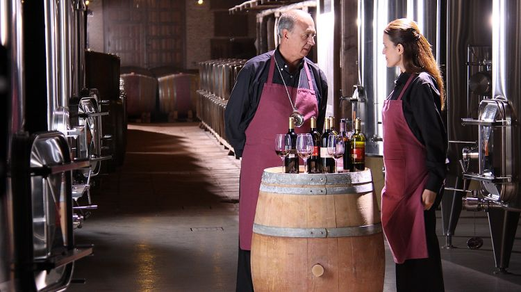 Small Group: Imperial Toledo and Winery Tour