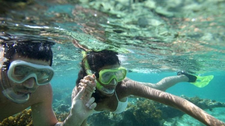 Snorkeling Tour of Sharm el-Sheikh