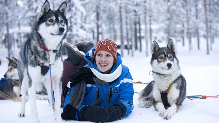 Snowy Trails Husky Safari in Rovaniemi