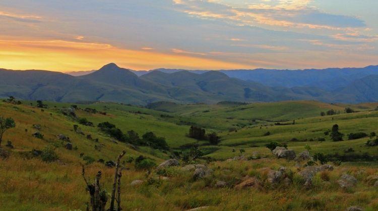 South Africa: Walking & Wildlife