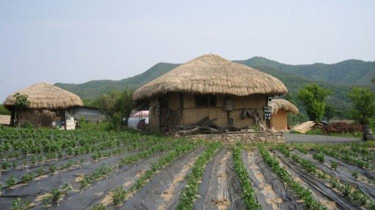 South Korea Eastern Adventure 3D/2N