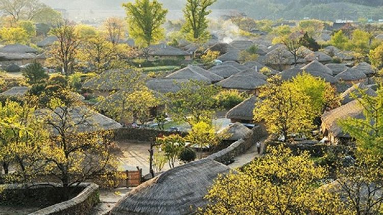 South Korea Highlights 7D/6N