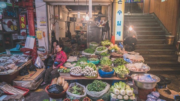 South Korea Real Food Adventure
