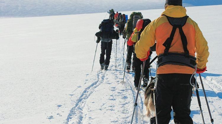 Spitsbergen, East Greenland and Iceland (Sea Adventurer) 2017