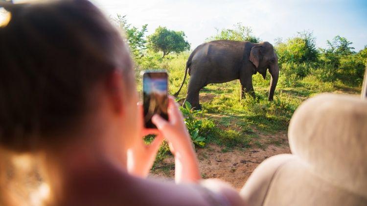 Sri Lanka Experience 12 Day