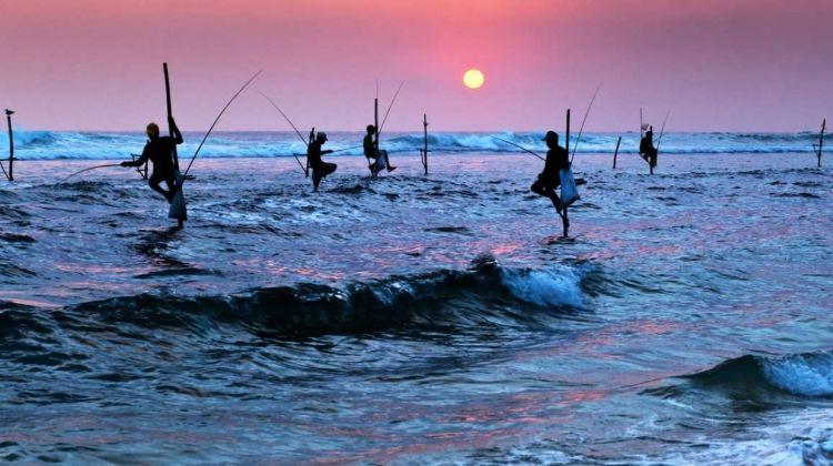 Sri Lanka In Depth - Private Tour