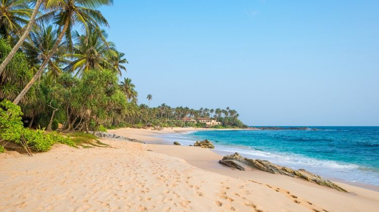 Sri Lanka Luxury Tour