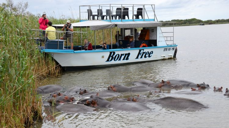 St. Lucia Wetlands Boat Ride (iSimangaliso)