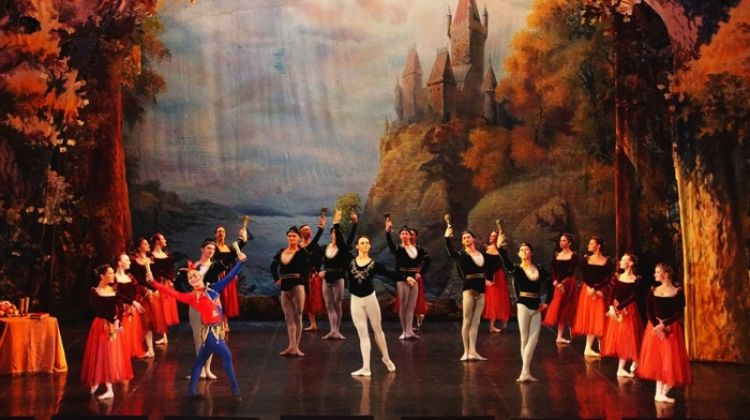 St Petersburg: Swan Lake Ballet at an Imperial Theater