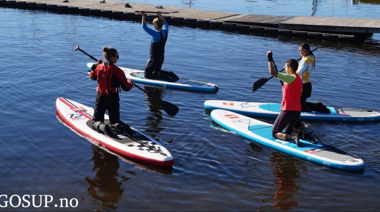 Stand Up Paddle (SUP)  Introduction Course