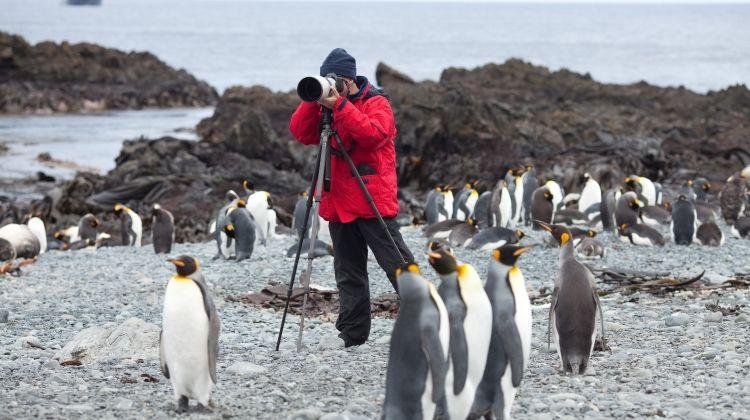 Sub-Antarctic Islands of New Zealand