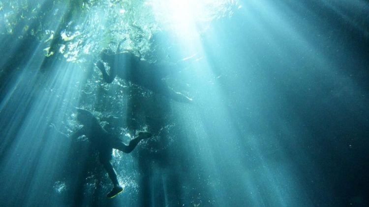 Subterranean Snorkel Adventure
