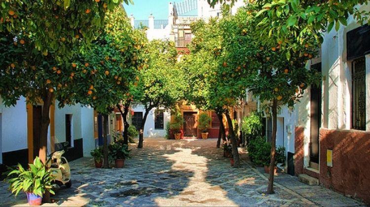 Tapas Lover Tour Seville