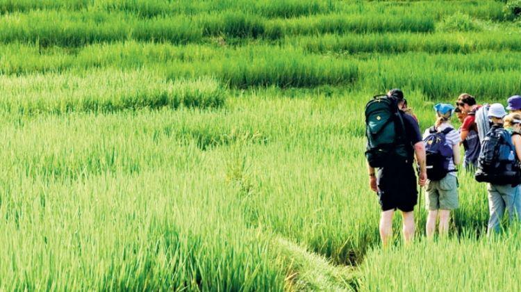 Thailand: Hike, Bike & Kayak