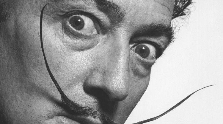 The Dalí Museum Tour