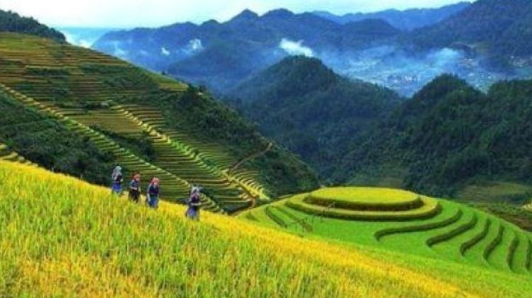 The Fansipan and Real Sapa Experience 6D5N