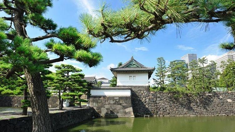 Tokyo Highlights & Sumida River Adventure