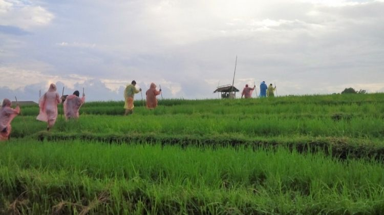 Total Bali Food Tour: Rice Terraces & Eat Street