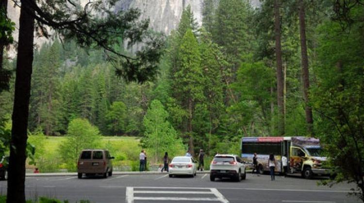 Total Yosemite Experience