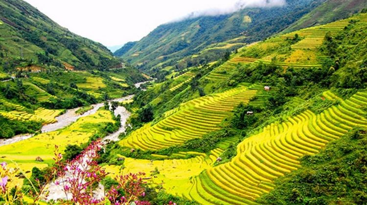 Tour sapa 2 days 1 night homestay in Ban Ho