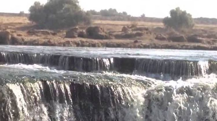 Tour to Whales Valley and Wadi El Rayan Waterfalls