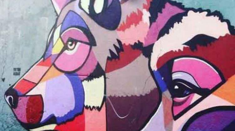 Township Tour & Street Art Walking Tour